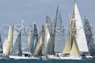 2012 Boxing Day Dash 2012