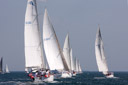 Property Industry Foundation Regatta